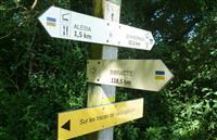 Un nouveau souffle pour le chemin Bibracte-Alésia dans le Morvan !