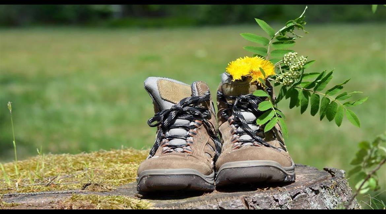 Bien choisir ses chaussures de randonnée